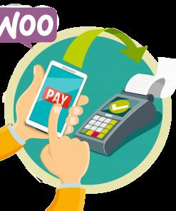 payir logo 247x296 - درگاه پرداخت پی برای ووکامرس